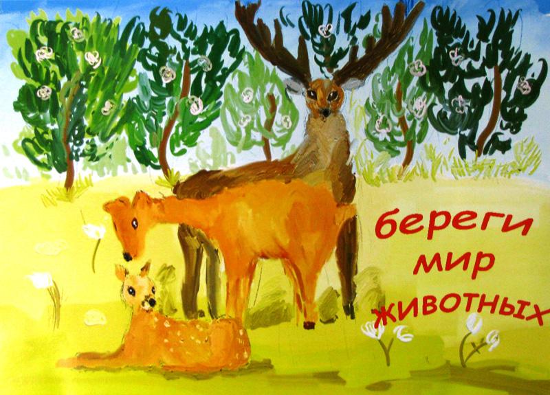 Плакат о животного береги